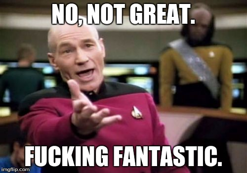 Picard Wtf Meme | NO, NOT GREAT. F**KING FANTASTIC. | image tagged in memes,picard wtf | made w/ Imgflip meme maker