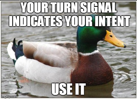 Actual Advice Mallard Meme | YOUR TURN SIGNAL INDICATES YOUR INTENT USE IT | image tagged in memes,actual advice mallard,AdviceAnimals | made w/ Imgflip meme maker