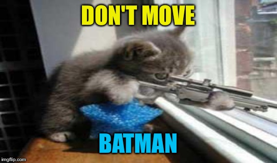 DON'T MOVE BATMAN | made w/ Imgflip meme maker