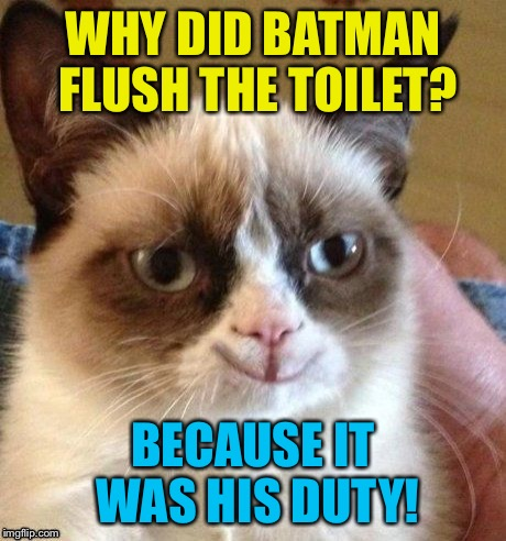 grumpy smile | WHY DID BATMAN FLUSH THE TOILET? BECAUSE IT WAS HIS DUTY! | image tagged in grumpy smile | made w/ Imgflip meme maker