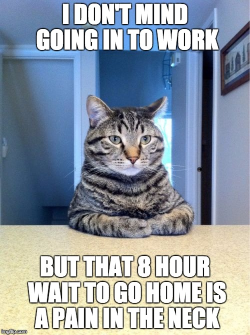 Take A Seat Cat Meme | I DON'T MIND GOING IN TO WORK BUT THAT 8 HOUR WAIT TO GO HOME IS A PAIN IN THE NECK | image tagged in memes,take a seat cat | made w/ Imgflip meme maker