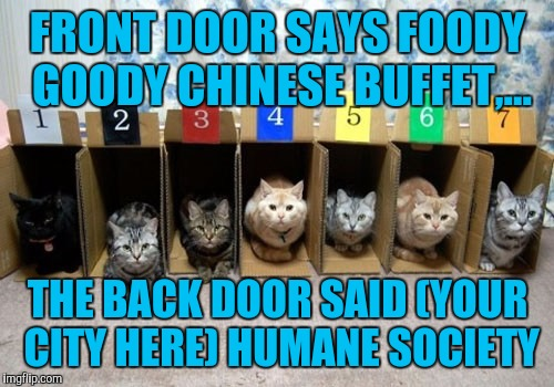 FRONT DOOR SAYS FOODY GOODY CHINESE BUFFET,... THE BACK DOOR SAID (YOUR CITY HERE) HUMANE SOCIETY | made w/ Imgflip meme maker