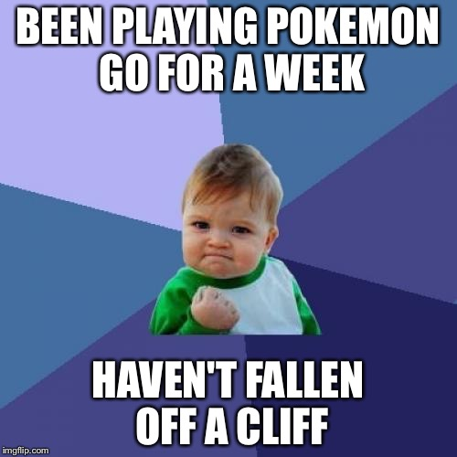 Success Kid Meme | BEEN PLAYING POKEMON GO FOR A WEEK HAVEN'T FALLEN OFF A CLIFF | image tagged in memes,success kid | made w/ Imgflip meme maker