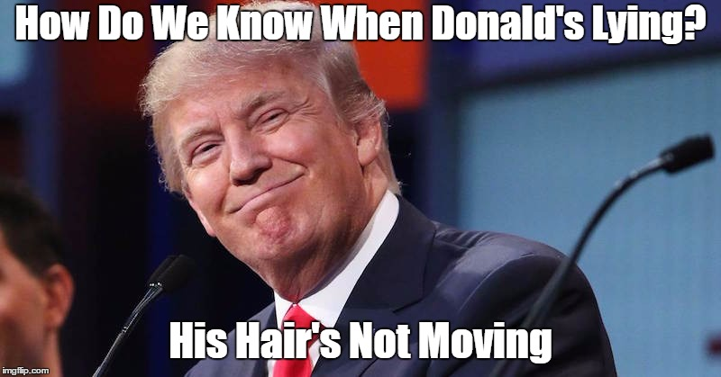 How Do We Know When Donald's Lying? His Hair's Not Moving | made w/ Imgflip meme maker