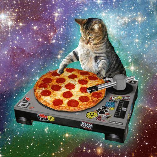 Space Cat Happy Birthday Blank Template , Imgflip