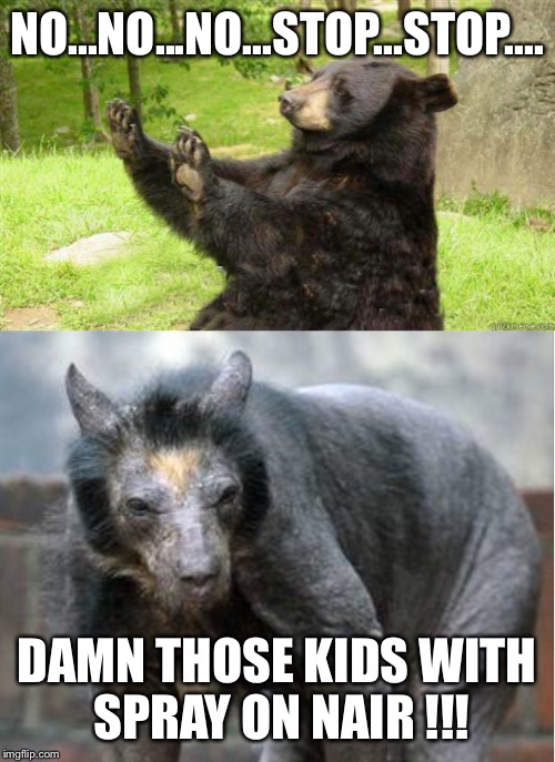 Like bears don't have enough to worry about | NO...NO...NO...STOP...STOP.... DAMN THOSE KIDS WITH SPRAY ON NAIR !!! | image tagged in memes,no just no,how about no bear,baldness | made w/ Imgflip meme maker