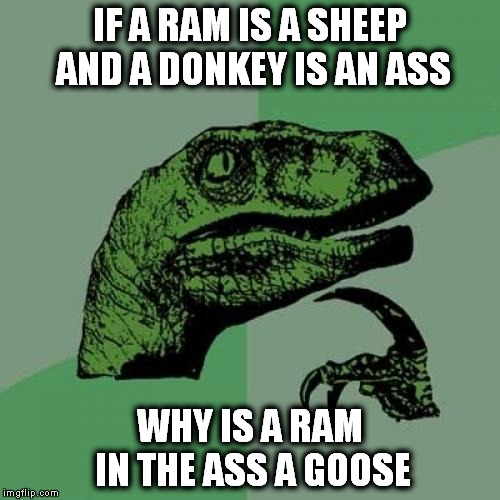 Philosoraptor Meme | IF A RAM IS A SHEEP AND A DONKEY IS AN ASS WHY IS A RAM IN THE ASS A GOOSE | image tagged in memes,philosoraptor | made w/ Imgflip meme maker