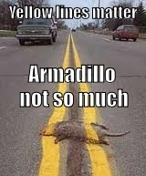 Yellow lines matter Armadillo not so much | made w/ Imgflip meme maker