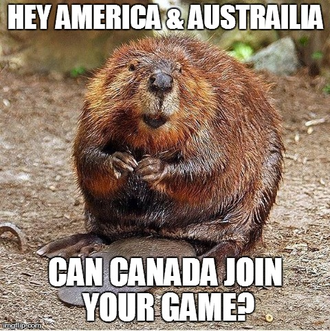 Rbeaver | HEY AMERICA  | image tagged in rbeaver,pics | made w/ Imgflip meme maker