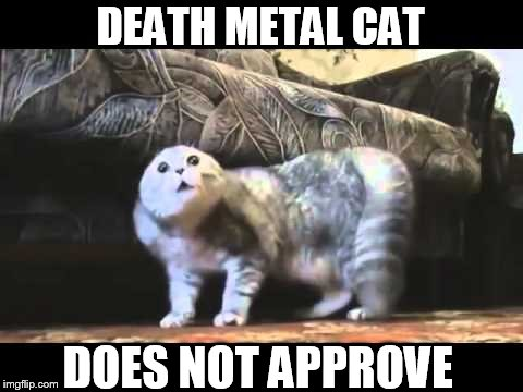 DEATH METAL CAT DOES NOT APPROVE | made w/ Imgflip meme maker