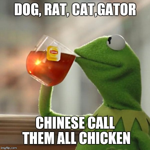 But Thats None Of My Business Meme | DOG, RAT, CAT,GATOR CHINESE CALL THEM ALL CHICKEN | image tagged in memes,but thats none of my business,kermit the frog | made w/ Imgflip meme maker
