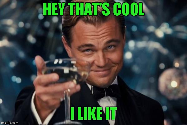 Leonardo Dicaprio Cheers Meme | HEY THAT'S COOL I LIKE IT | image tagged in memes,leonardo dicaprio cheers | made w/ Imgflip meme maker