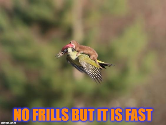 NO FRILLS BUT IT IS FAST | made w/ Imgflip meme maker