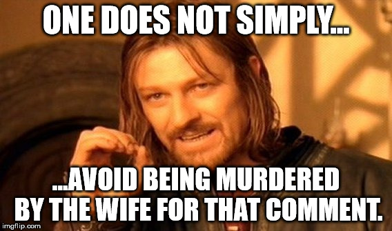 One Does Not Simply Meme | ONE DOES NOT SIMPLY... ...AVOID BEING MURDERED BY THE WIFE FOR THAT COMMENT. | image tagged in memes,one does not simply | made w/ Imgflip meme maker