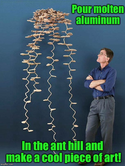 Pour molten aluminum In the ant hill and make a cool piece of art! | made w/ Imgflip meme maker