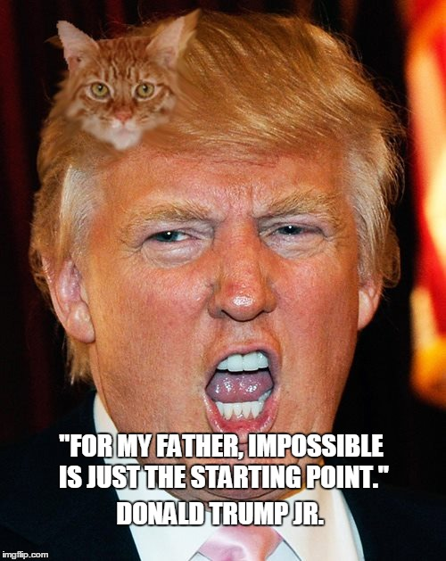 "Trump Cat Hairstyle |  ""FOR MY FATHER, IMPOSSIBLE IS JUST THE STARTING POINT.""; DONALD TRUMP JR. 