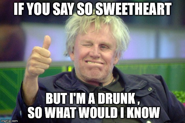 gary busey | IF YOU SAY SO SWEETHEART BUT I'M A DRUNK , SO WHAT WOULD I KNOW | image tagged in drunk | made w/ Imgflip meme maker