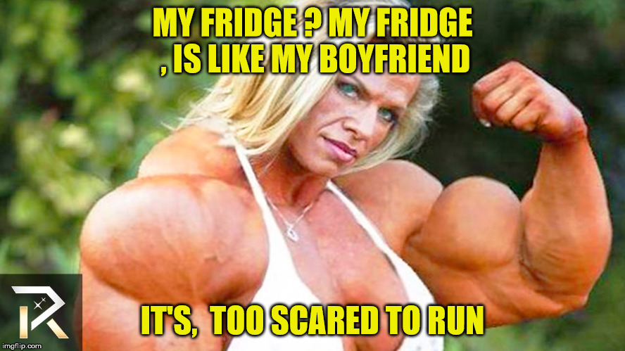 MY FRIDGE ? MY FRIDGE , IS LIKE MY BOYFRIEND IT'S,  TOO SCARED TO RUN | made w/ Imgflip meme maker