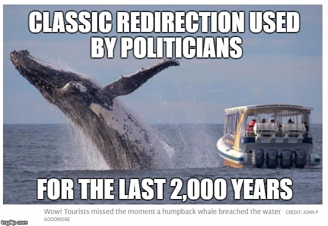 Classic Redirection | CLASSIC REDIRECTIONUSED BY POLITICIANS FOR THE LAST 2,000 YEARS | image tagged in whale,misdirection,redirection,politics | made w/ Imgflip meme maker