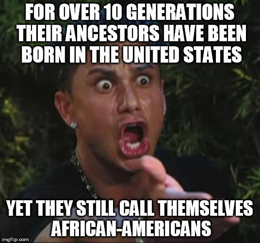 DJ Pauly D Meme | FOR OVER 10 GENERATIONS THEIR ANCESTORS HAVE BEEN BORN IN THE UNITED STATES YET THEY STILL CALL THEMSELVES AFRICAN-AMERICANS | image tagged in memes,dj pauly d | made w/ Imgflip meme maker