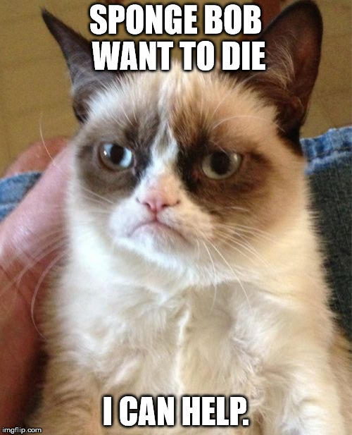 Grumpy Cat Meme | SPONGE BOB WANT TO DIE I CAN HELP. | image tagged in memes,grumpy cat | made w/ Imgflip meme maker