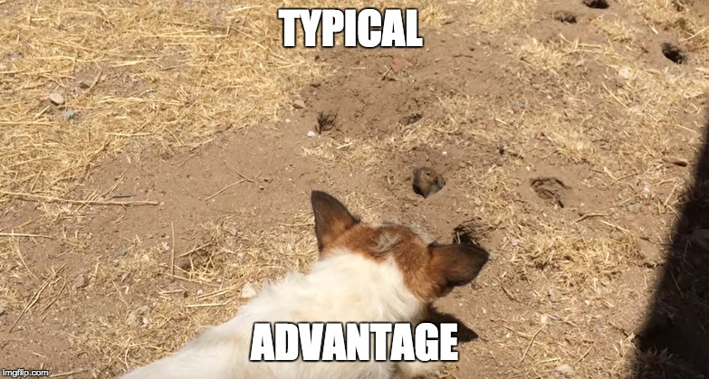 gopher-finds-portal | TYPICAL ADVANTAGE | image tagged in gopher,typical,trick,hacker,mlgwombat,nlggopher | made w/ Imgflip meme maker