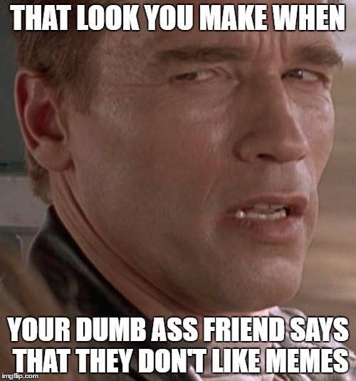 THAT LOOK YOU MAKE WHEN YOUR DUMB ASS FRIEND SAYS THAT THEY DON'T LIKE MEMES | image tagged in terminator,dumbfounded,memes,friends | made w/ Imgflip meme maker