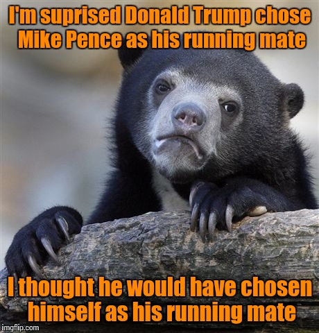 He seems like the type of guy who would chose himself | I'm suprised Donald Trump chose Mike Pence as his running mate I thought he would have chosen himself as his running mate | image tagged in memes,confession bear,donald trump,trhtimmy,mike pence | made w/ Imgflip meme maker