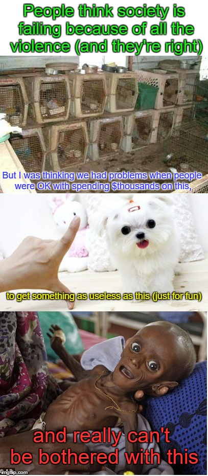 Dying society | People think society is failing because of all the violence (and they're right) But I was thinking we had problems when people were OK with  | image tagged in dog breeders,society,humanity,death,starvation,priorities | made w/ Imgflip meme maker