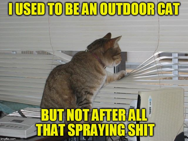 I USED TO BE AN OUTDOOR CAT BUT NOT AFTER ALL THAT SPRAYING SHIT | made w/ Imgflip meme maker