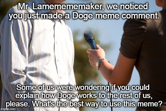Mr. Lamemememaker, we noticed you just made a Doge meme comment. Some of us were wondering if you could explain how Doge works to the rest o | made w/ Imgflip meme maker