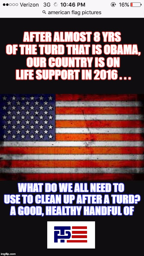 Time to clean up after 8 yrs in the toilet! |  AFTER ALMOST 8 YRS OF THE TURD THAT IS OBAMA, OUR COUNTRY IS ON LIFE SUPPORT IN 2016 . . . WHAT DO WE ALL NEED TO USE TO CLEAN UP AFTER A TURD? A GOOD, HEALTHY HANDFUL OF | image tagged in american flag | made w/ Imgflip meme maker