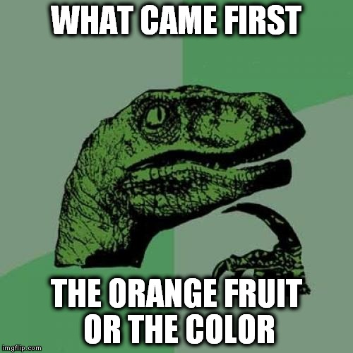 Philosoraptor Meme | WHAT CAME FIRST THE ORANGE FRUIT OR THE COLOR | image tagged in memes,philosoraptor | made w/ Imgflip meme maker