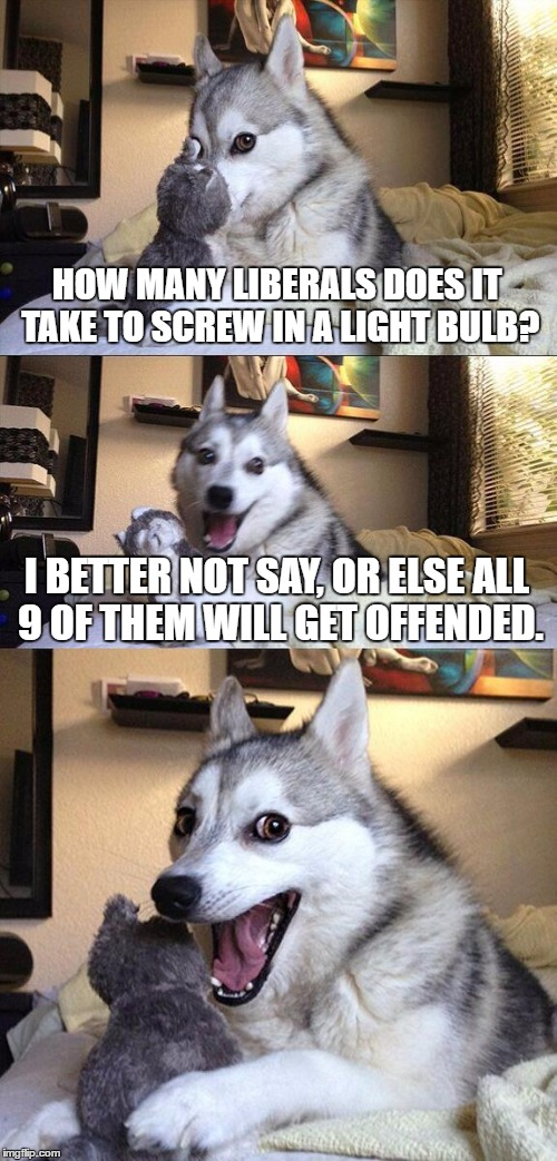 Get it? | HOW MANY LIBERALS DOES IT TAKE TO SCREW IN A LIGHT BULB? I BETTER NOT SAY, OR ELSE ALL 9 OF THEM WILL GET OFFENDED. | image tagged in memes,bad pun dog,funny | made w/ Imgflip meme maker