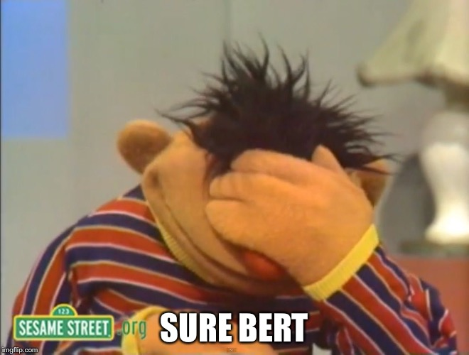 SURE BERT | made w/ Imgflip meme maker