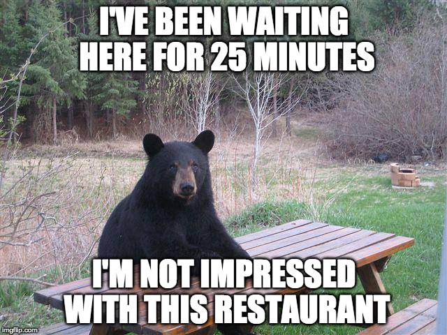 Bear at Picnic Table | I'VE BEEN WAITING HEREFOR 25 MINUTES I'M NOT IMPRESSED WITH THIS RESTAURANT | image tagged in bear at picnic table | made w/ Imgflip meme maker