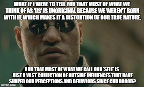 Matrix Morpheus Meme | WHAT IF I WERE TO TELL YOU THAT MOST OF WHAT WE THINK OF AS 'US' IS UNORIGINAL BECAUSE WE WEREN'T BORN WITH IT, WHICH MAKES IT A DISTORTION  | image tagged in memes,matrix morpheus | made w/ Imgflip meme maker