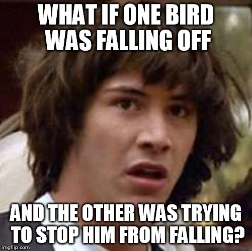 Conspiracy Keanu Meme | WHAT IF ONE BIRD WAS FALLING OFF AND THE OTHER WAS TRYING TO STOP HIM FROM FALLING? | image tagged in memes,conspiracy keanu | made w/ Imgflip meme maker