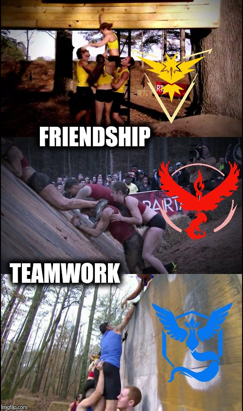 Pokémon Go: Teamwork | Friendship | TEAMWORK FRIENDSHIP | image tagged in pokemon go,teamwork,team valor,instinct,team mystic,friendship | made w/ Imgflip meme maker