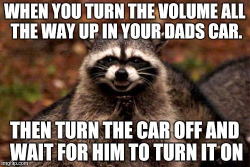 17sr3g evil plotting raccoon meme imgflip