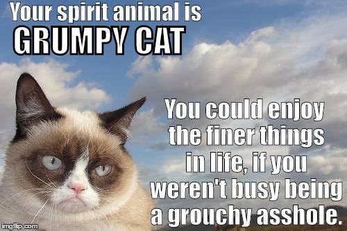 Grumpy Cat Spirit Animal | Your spirit animal is You could enjoy the finer things in life, if you weren't busy being a grouchy asshole. GRUMPY CAT | image tagged in memes,grumpy cat sky,grumpy cat,spirit animal | made w/ Imgflip meme maker