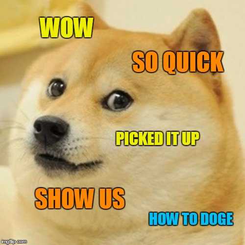 Doge Meme | WOW SO QUICK PICKED IT UP SHOW US HOW TO DOGE | image tagged in memes,doge | made w/ Imgflip meme maker
