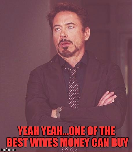 Face You Make Robert Downey Jr Meme | YEAH YEAH...ONE OF THE BEST WIVES MONEY CAN BUY | image tagged in memes,face you make robert downey jr | made w/ Imgflip meme maker