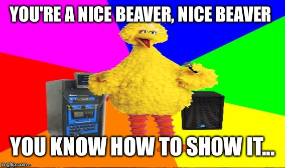 YOU'RE A NICE BEAVER, NICE BEAVER YOU KNOW HOW TO SHOW IT... | made w/ Imgflip meme maker