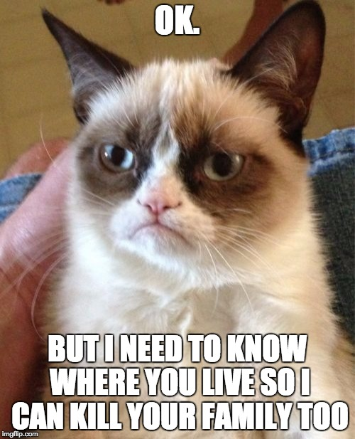 Grumpy Cat Meme | OK. BUT I NEED TO KNOW WHERE YOU LIVE SO I CAN KILL YOUR FAMILY TOO | image tagged in memes,grumpy cat | made w/ Imgflip meme maker