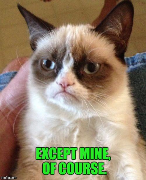 Grumpy Cat Meme | EXCEPT MINE, OF COURSE. | image tagged in memes,grumpy cat | made w/ Imgflip meme maker