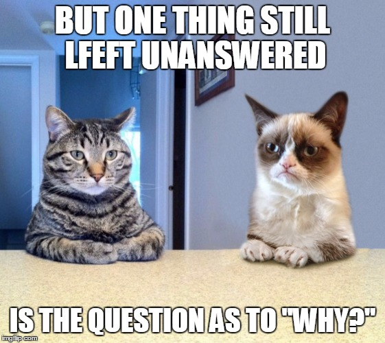 "BUT ONE THING STILL LFEFT UNANSWERED IS THE QUESTION AS TO ""WHY?"" 