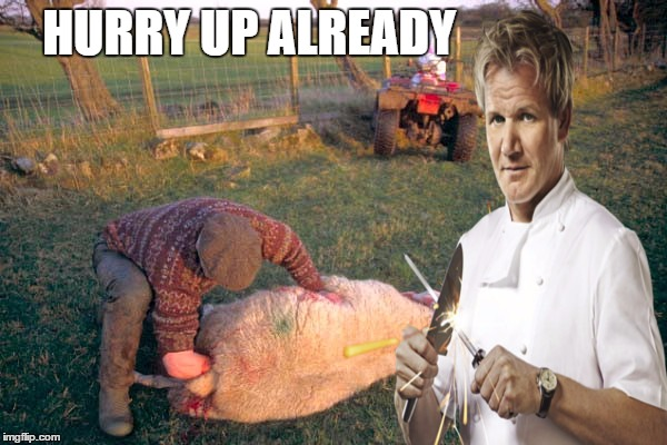 This lamb is so raw .a farmer  is still molesting  the sheep  | HURRY UP ALREADY | image tagged in memes,chef gordon ramsay,angry chef gordon ramsay,black sheep,silence of the lambs,hells kitchen meme | made w/ Imgflip meme maker