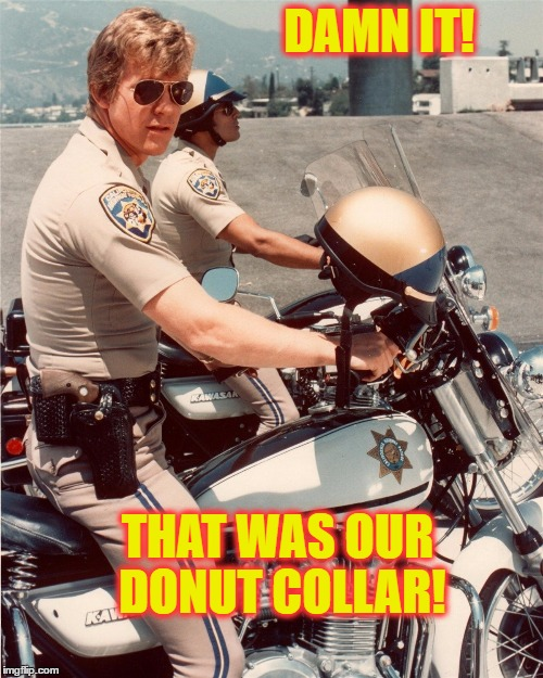 DAMN IT! THAT WAS OUR DONUT COLLAR! | made w/ Imgflip meme maker