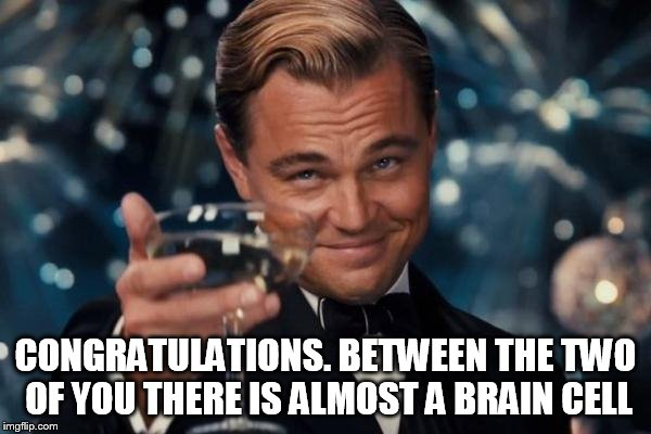 Leonardo Dicaprio Cheers Meme | CONGRATULATIONS. BETWEEN THE TWO OF YOU THERE IS ALMOST A BRAIN CELL | image tagged in memes,leonardo dicaprio cheers | made w/ Imgflip meme maker